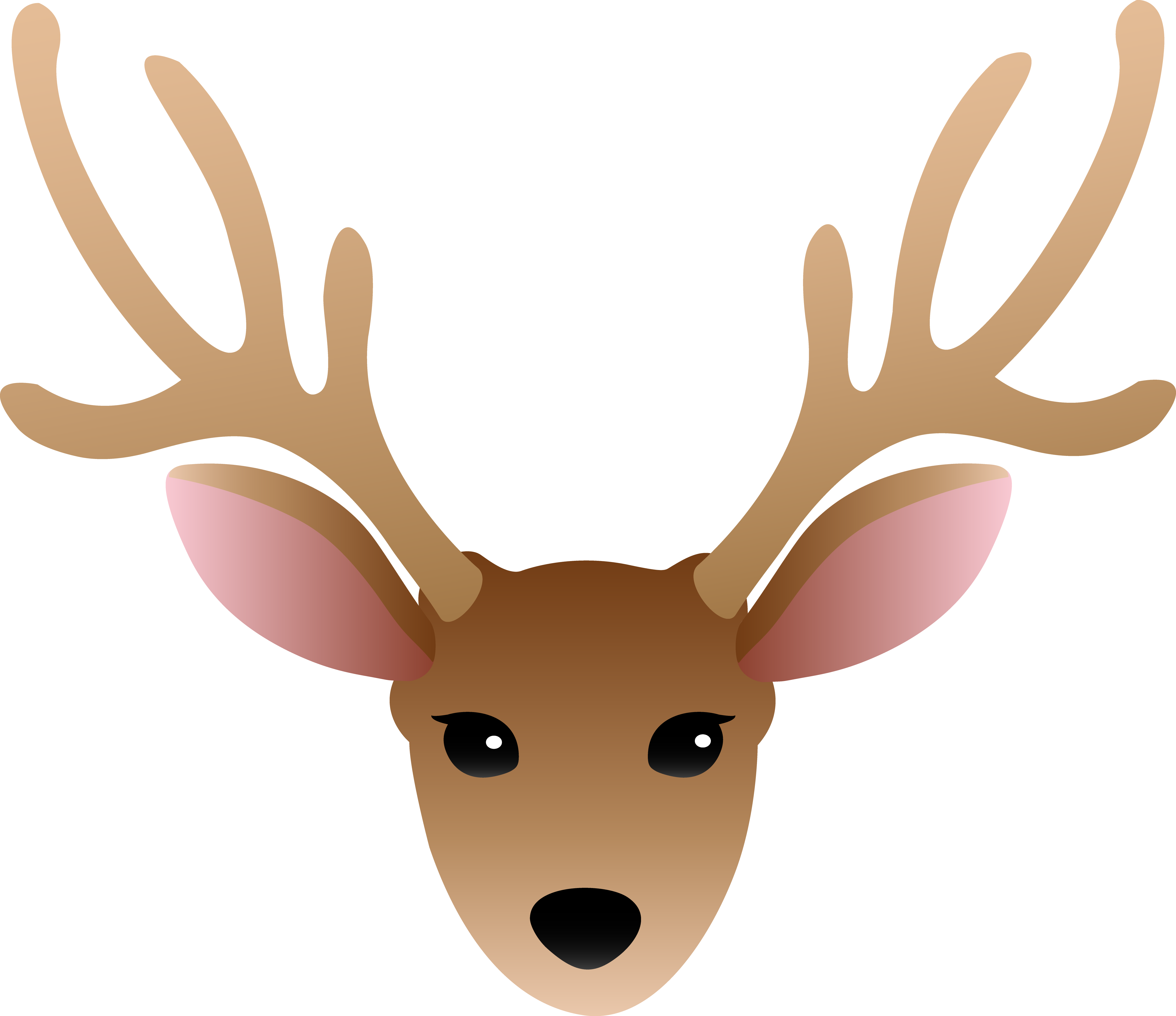 5001x4319 Face Of A Male Deer