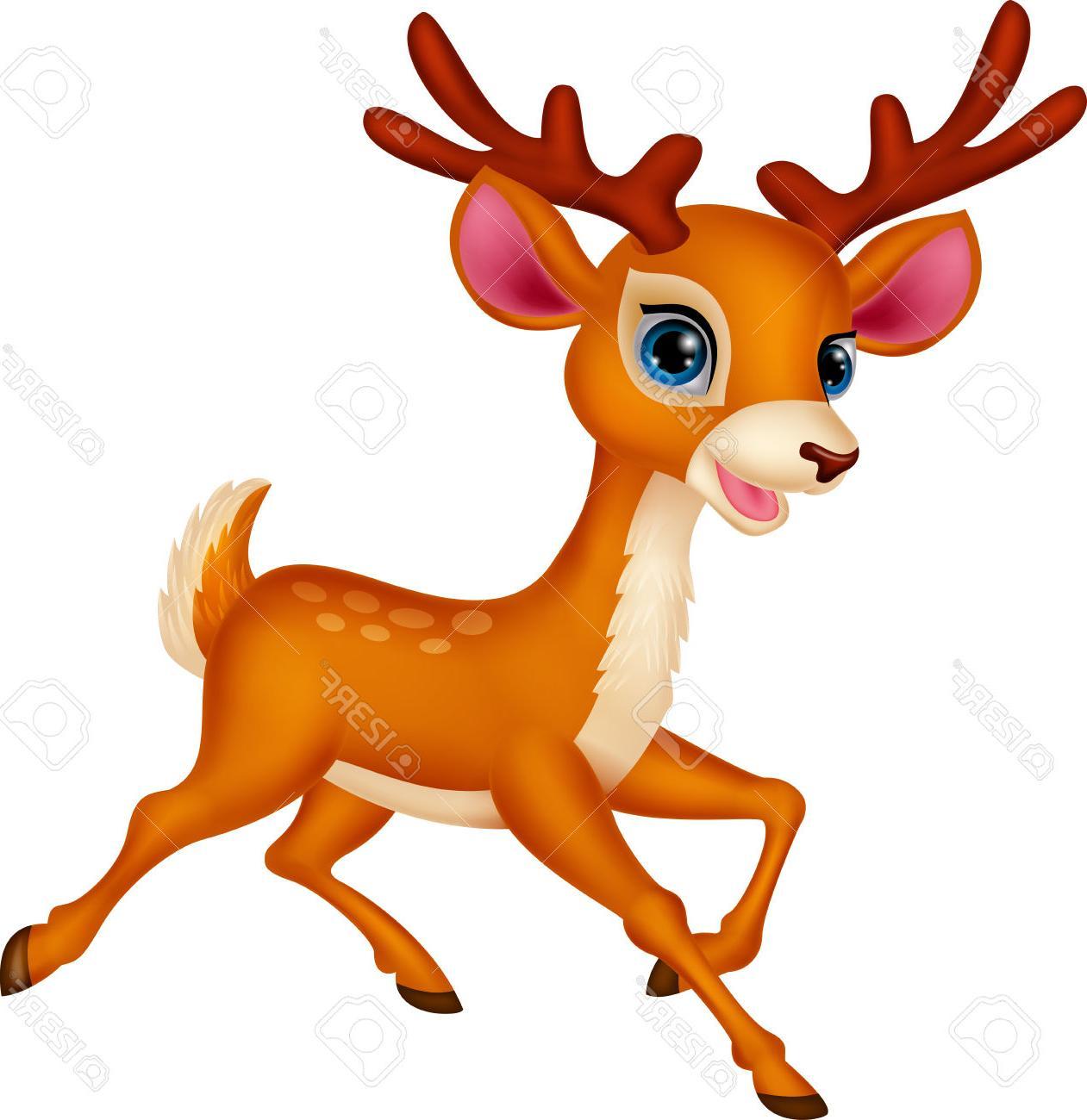 Deer cartoon. Pictures of free download