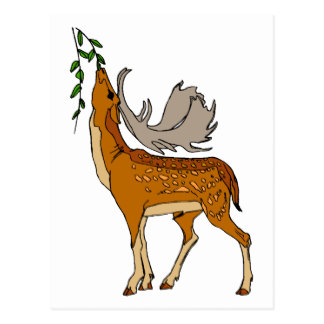324x324 Cartoon Deer Postcards Zazzle
