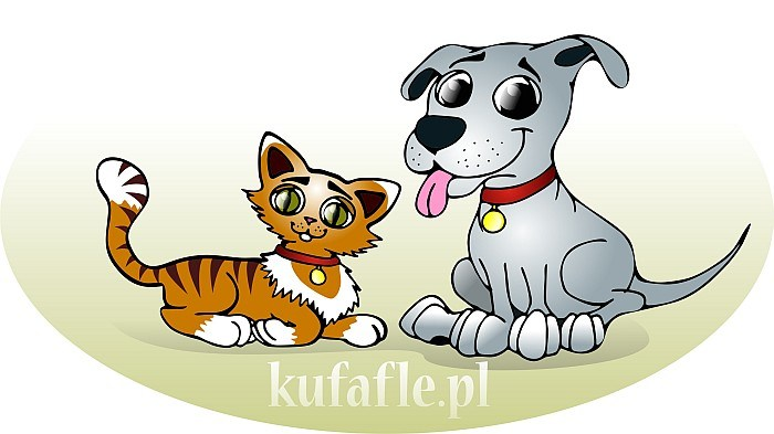 700x393 Cartoon Pics Of Dogs And Cats