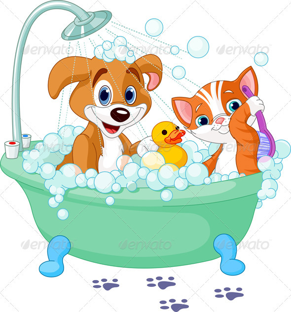 590x634 Dog And Cat Having A Bath Bath, Dog And Cat