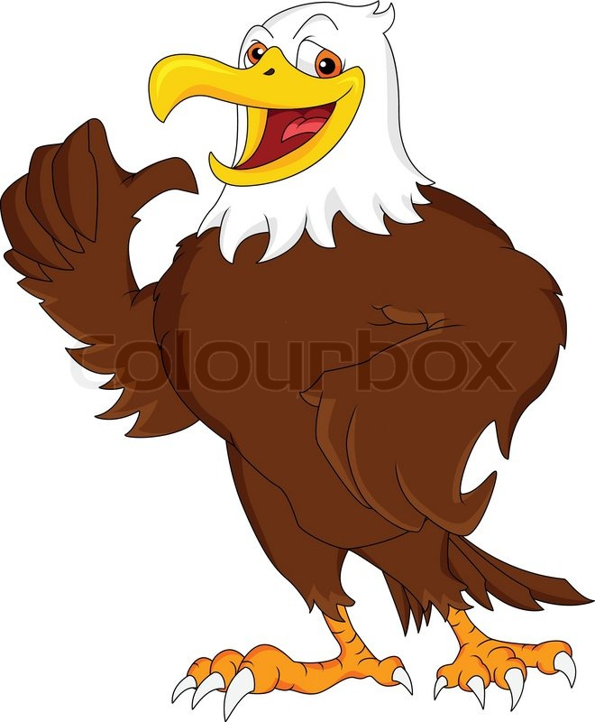 660x800 Eagle Cartoon Thumb Up Stock Vector Colourbox