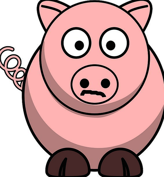 567x609 Pig, Glutton, Beef, Swine, Pork, Livestock, Cartoon, Animation
