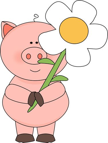 Cartoon Pigs Clipart