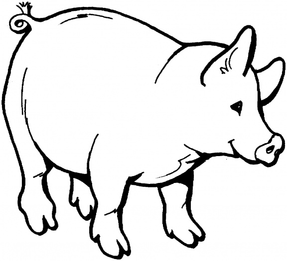 576x525 Pig Outline Clip Art Many Interesting Cliparts