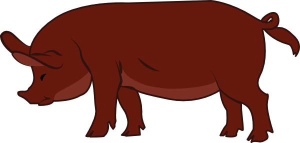 600x286 Pig Clipart Red