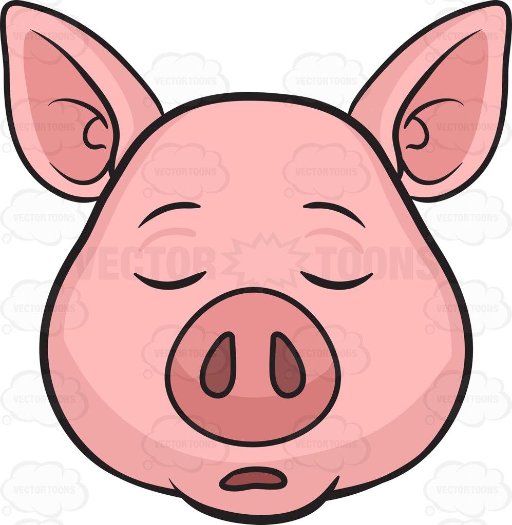 997x1024 Sleeping Clipart Pig