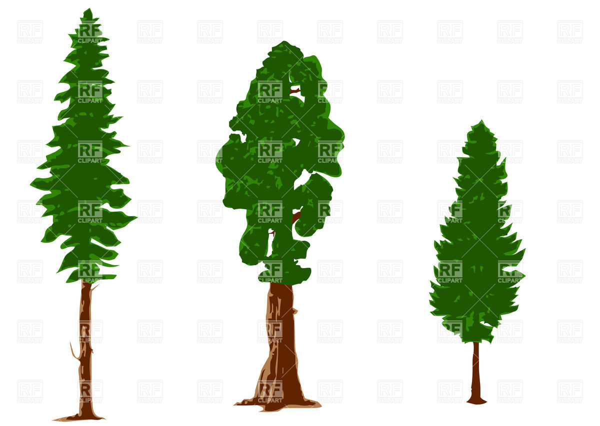 1200x853 Silhouettes Of Pine Trees Royalty Free Vector Clip Art Image