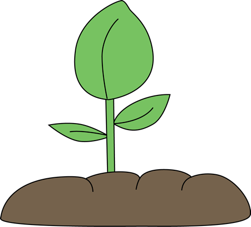 500x452 Cartoon Plant Clipart