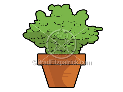 432x324 Cartoon Plant Clipart