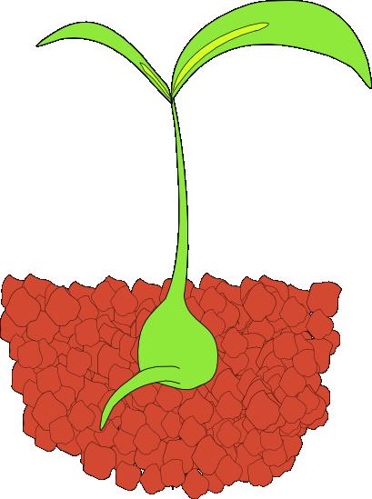 409x549 Free Plant Clipart