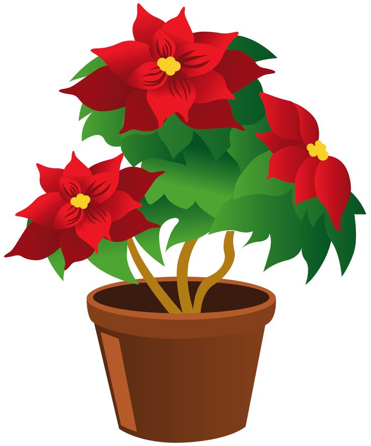 736x885 Plant Clipart Potted Plant