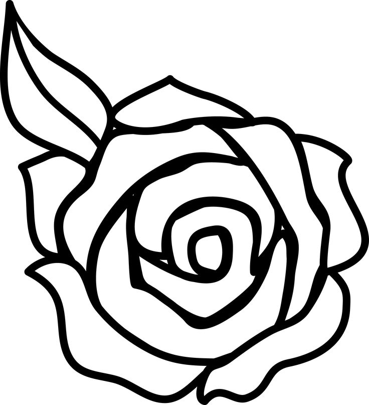 736x807 Drawn Rose Cartoon