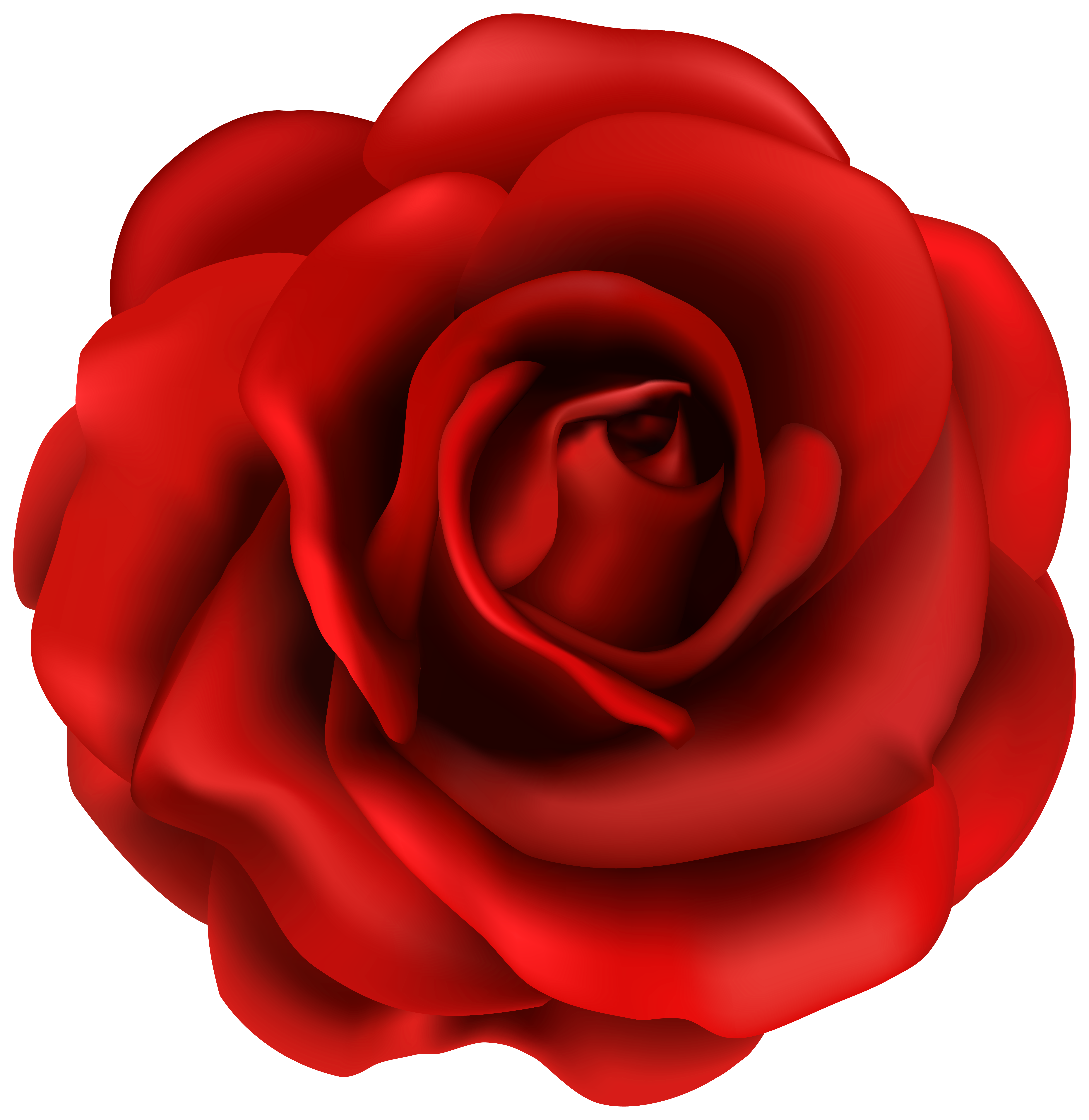 5898x6068 Amazing Ideas Rose Clip Art Red Roses Images Clipart Panda Free