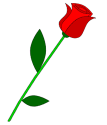 214x250 How To Draw A Rose