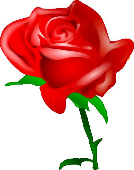 468x595 Red Rose Clip Art