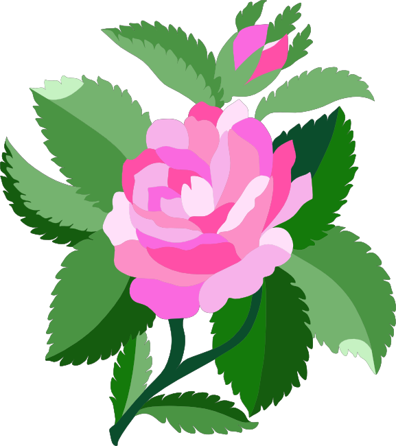 577x650 Rose Clipart Cartoon