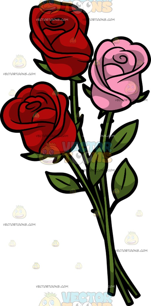504x1024 Three Roses Cartoon Clipart