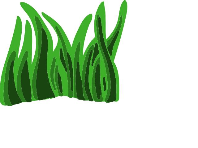 640x480 Graphics For Animated Seaweed Graphics