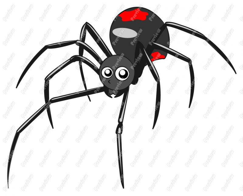 800x646 Black Widow Spider Character Clip Art