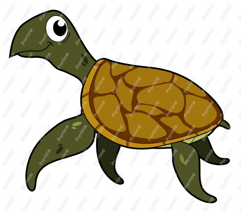 800x701 Sea Turtle Character Clip Art