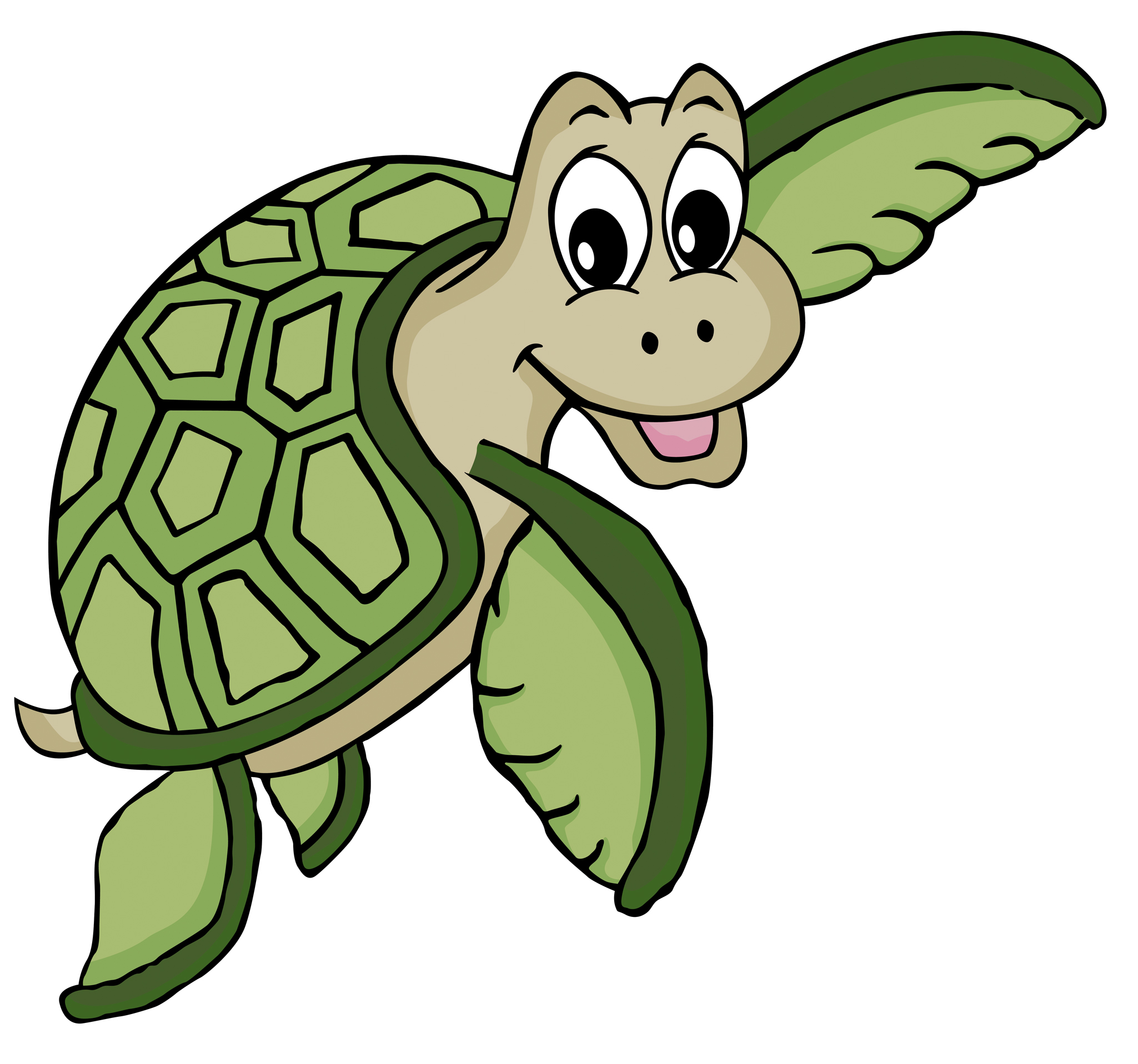 Cartoon Turtle Pictures | Free download on ClipArtMag