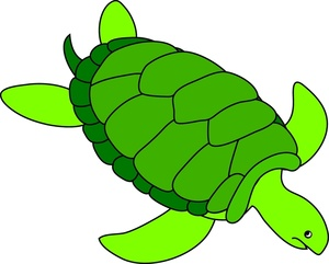 300x241 Turtle Clipart Image