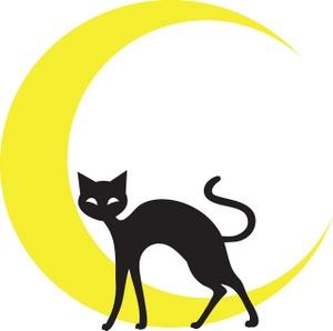300x298 Black Cat Clipart Image