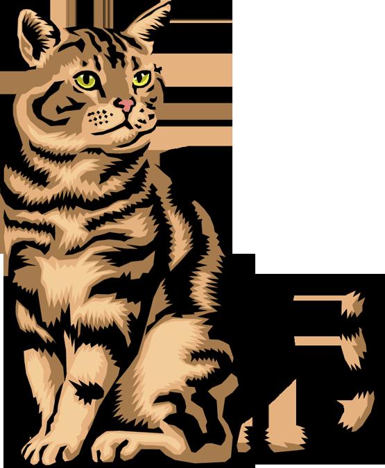 555x675 Cat Clipart 8