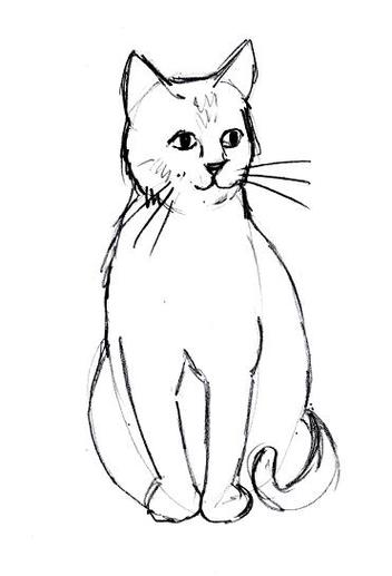 352x517 Cat Line Drawing Clip Art Clipart
