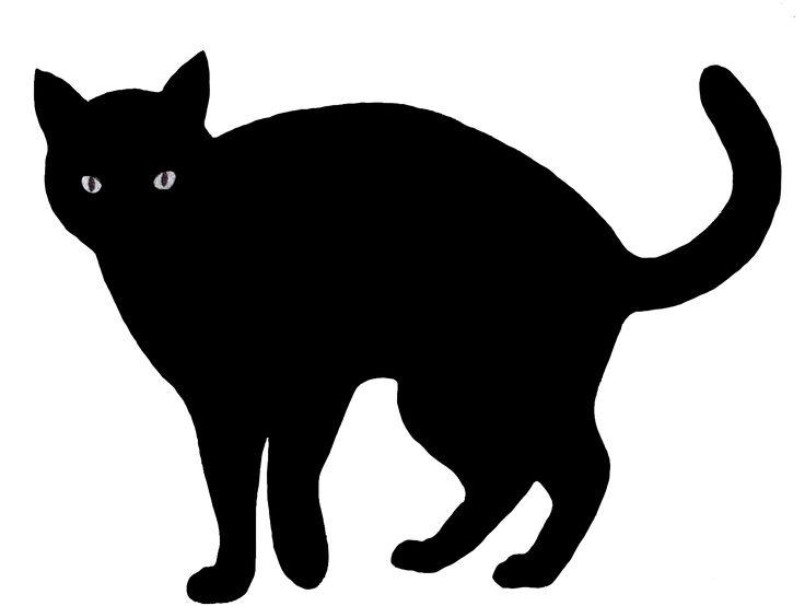 736x554 Black Cat Clipart Shadow