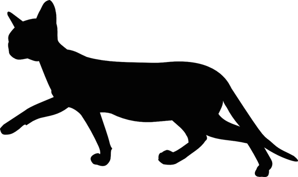 600x357 Cat Silhouette Transparent Background
