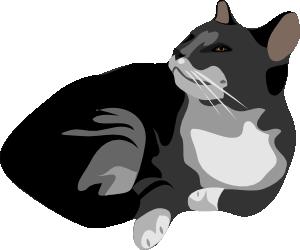 300x250 Gatto Cat Clip Art
