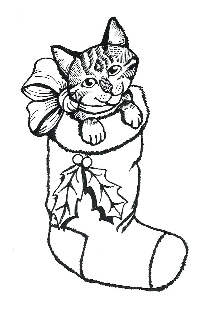 808x1177 5 Tabby Cat Coloring Page 88 Wonderful Kitten Pages Free Free