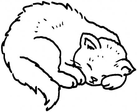439x360 Cat Color Pages Printable Cats Coloring Super