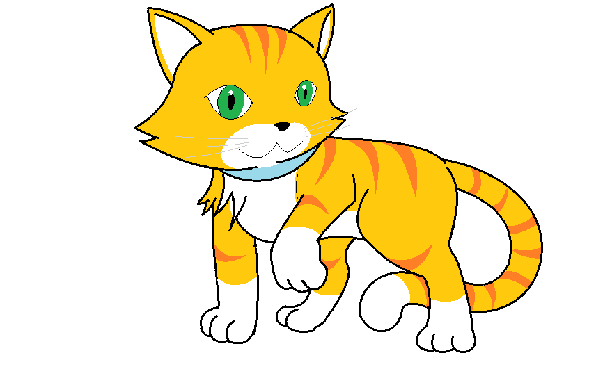 856x554 Cat Drawing By Blacktailedwolf