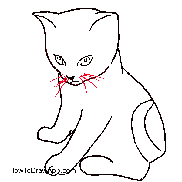 600x600 How To Draw A Cat Sitting Down Step By Step