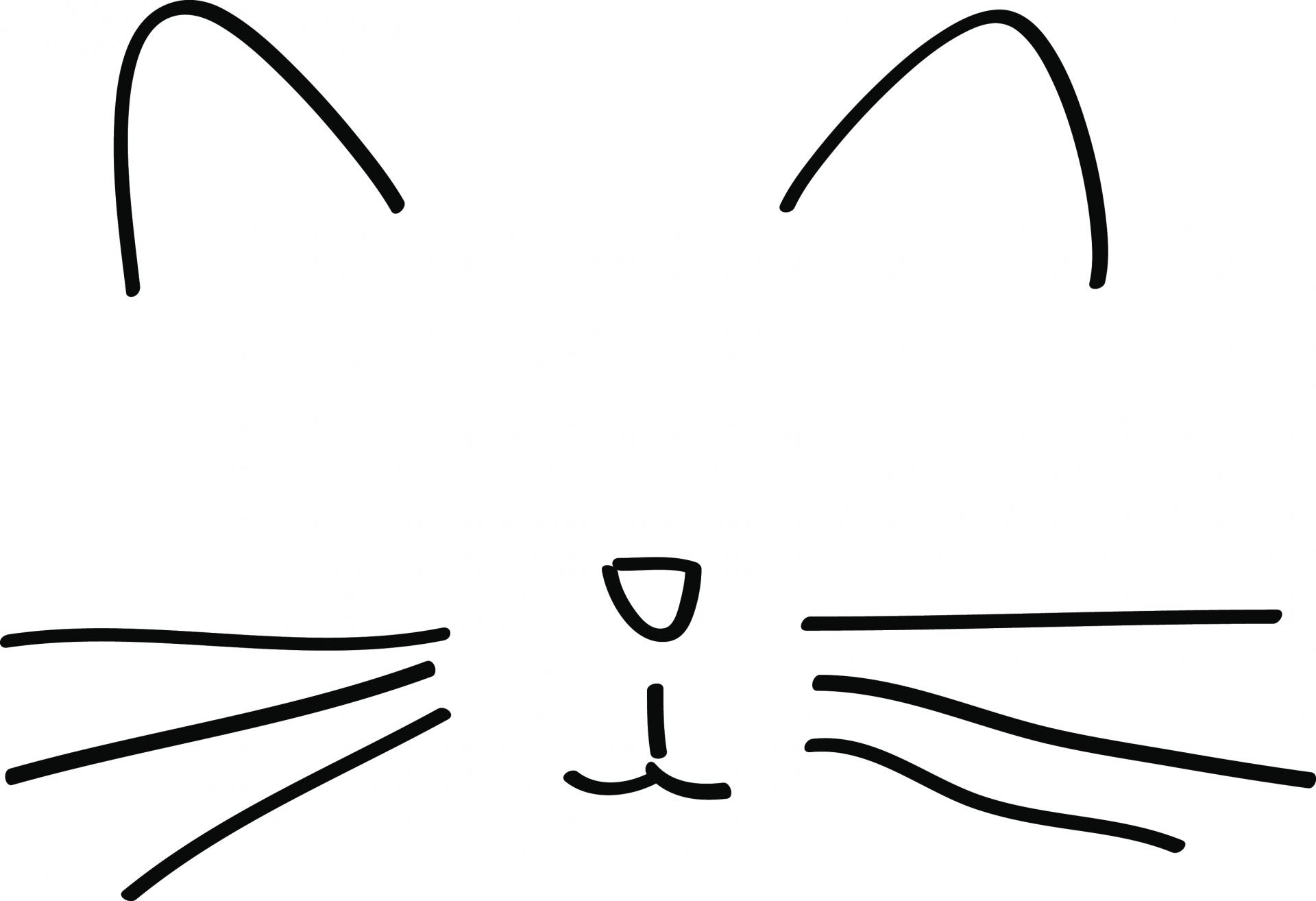 1920x1314 Minimalist Cat Drawing Free Stock Photo