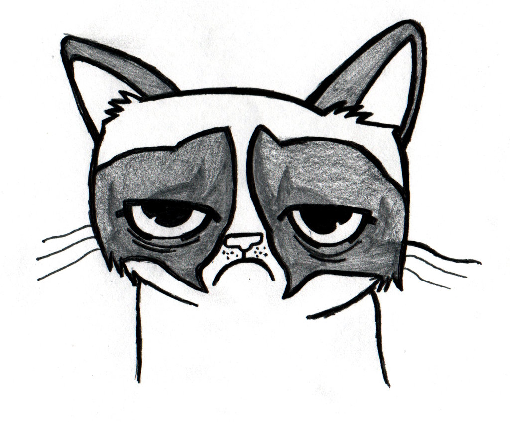 1024x847 Grumpy Cat Drawing By Jordantckr