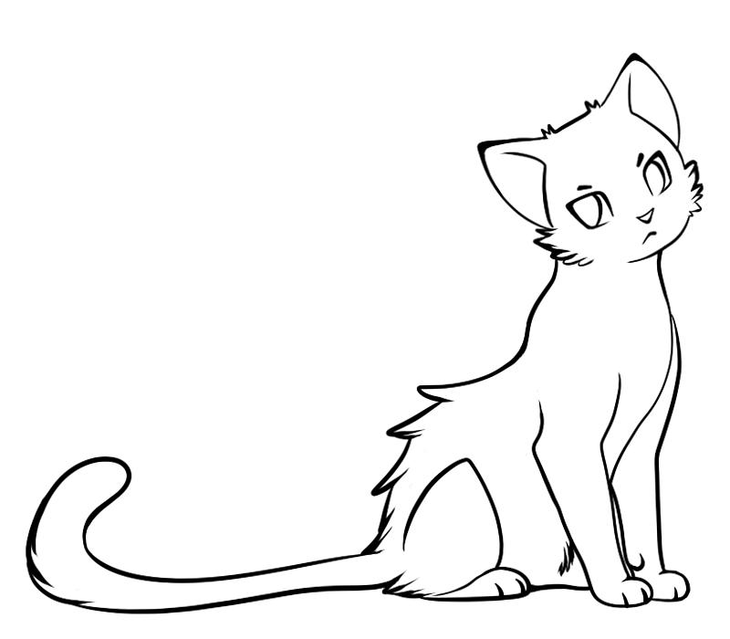 800x700 Simple Cat Drawings Clipart Best, Warrior Cats Kit Line Art