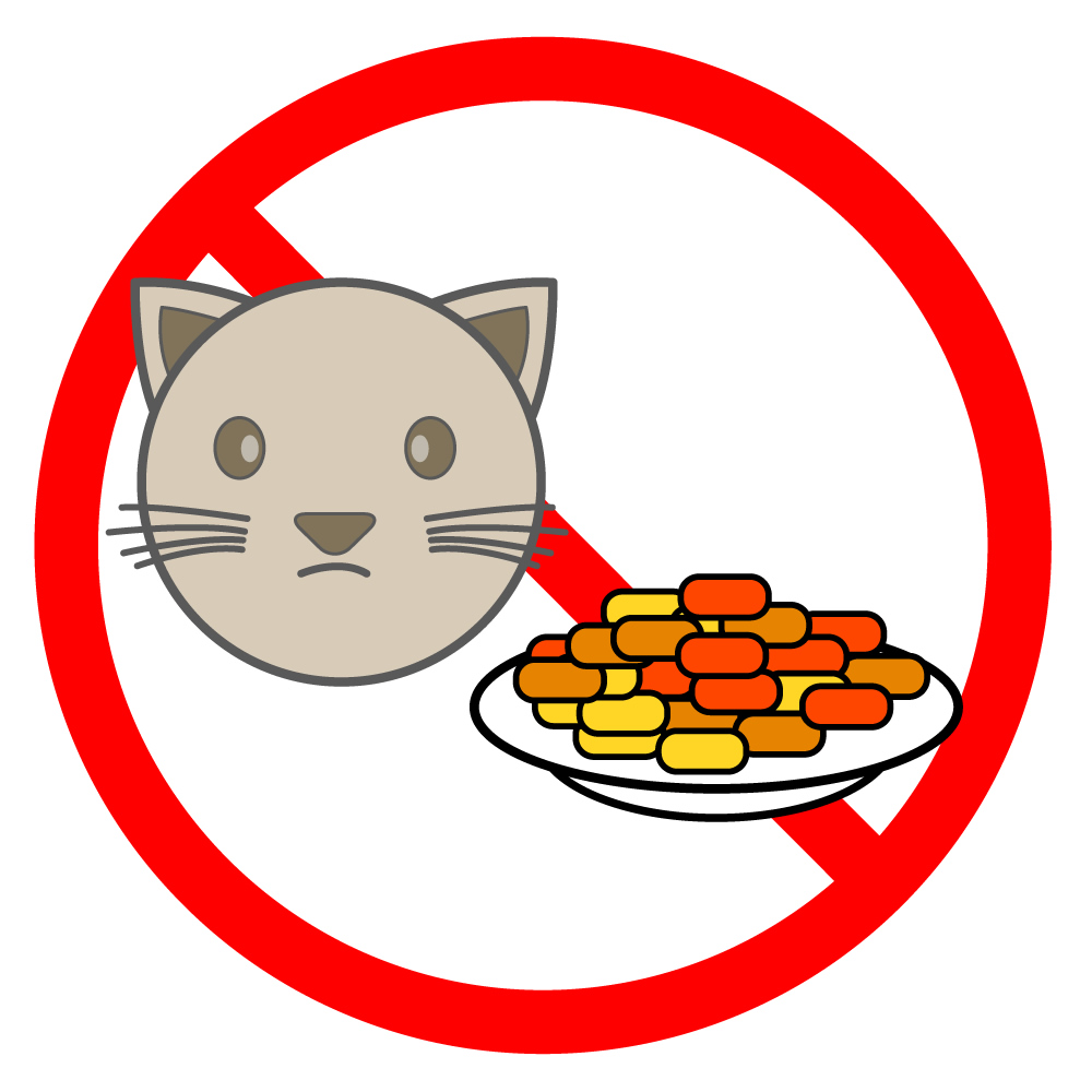 1000x1000 Please Do Not Feed The Cats Cats Prohibition Layout