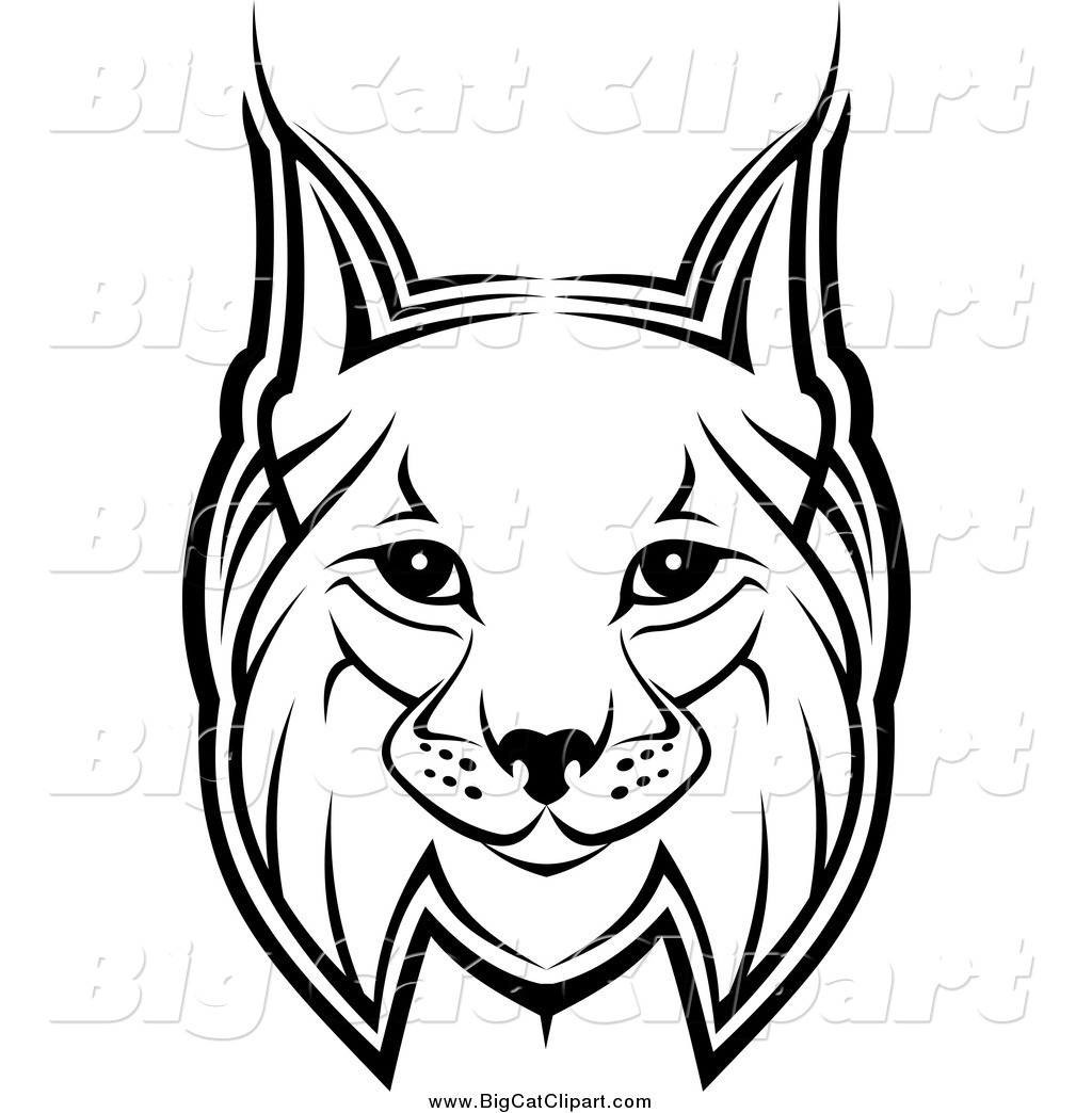 1024x1044 Big Cat Vector Clipart Of A Bobcat Face By Vector Tradition Sm