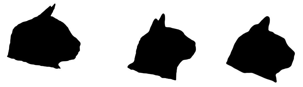 1062x305 Cat Head Silhouette