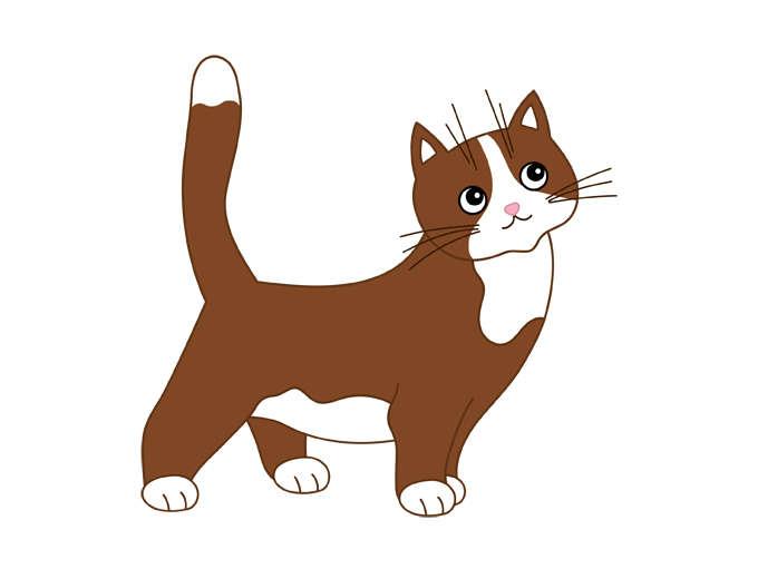 680x511 Cat Clipart