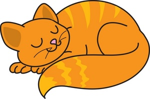 300x198 Cat Curled Up Clipart