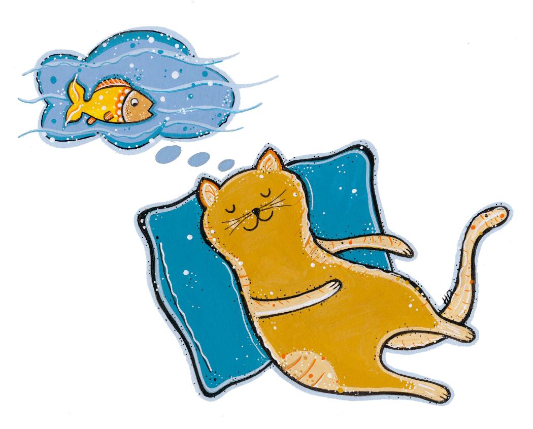 1050x845 Cat Nap!