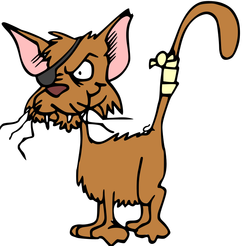 786x800 Picture Of A Cartoon Cat