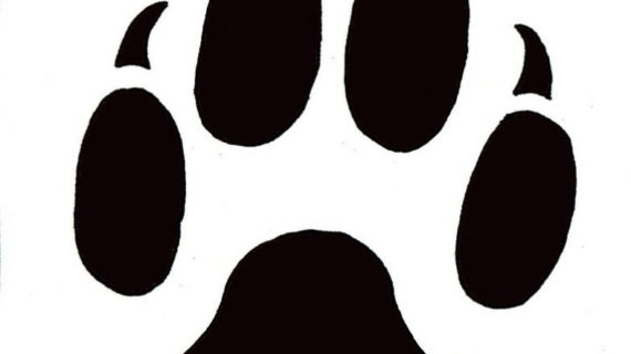 570x320 Dog Paw Print Drawing Craft Sites For Kids Cat Paw Clip Art