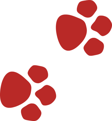 370x400 Graphics For Red Paw Print Graphics