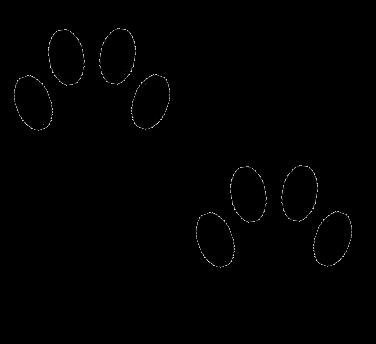 376x344 Best Photos Of Paw Print Cat Graphic
